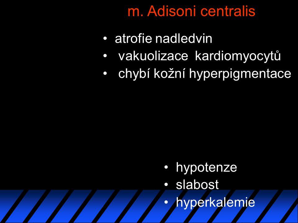 m. Adisoni centralis atrofie nadledvin vakuolizace kardiomyocytů