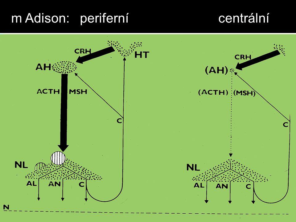m Adison: periferní centrální
