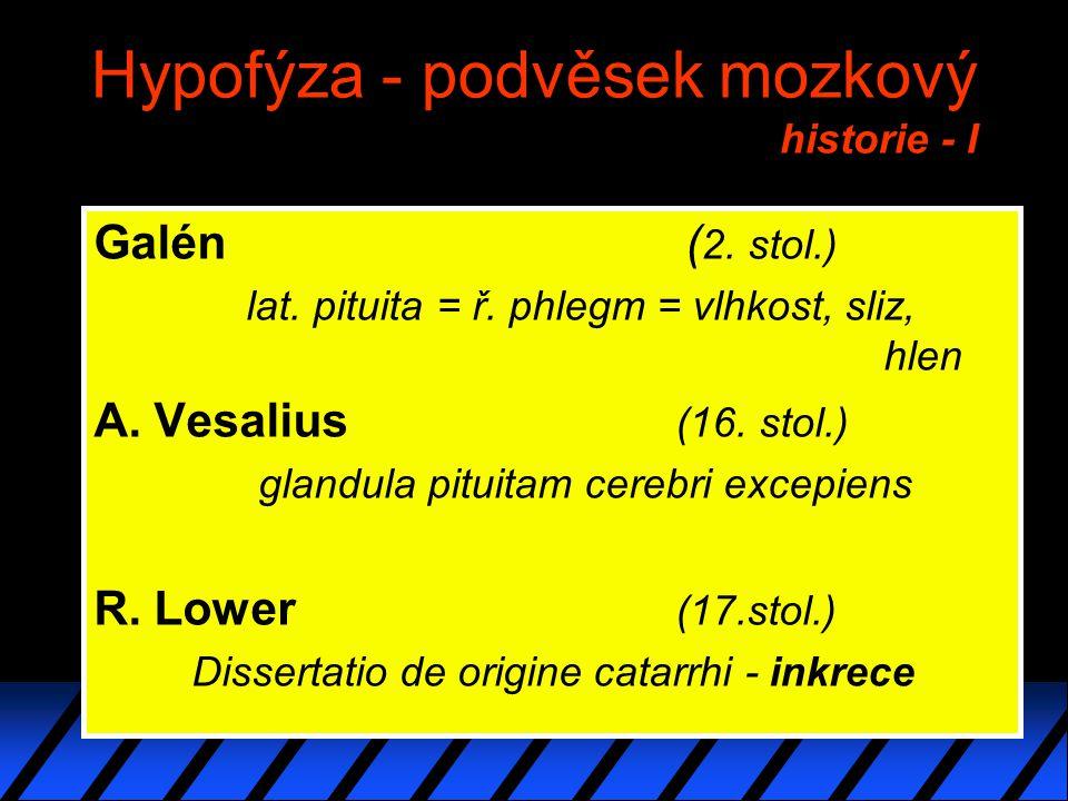 Hypofýza - podvěsek mozkový historie - I