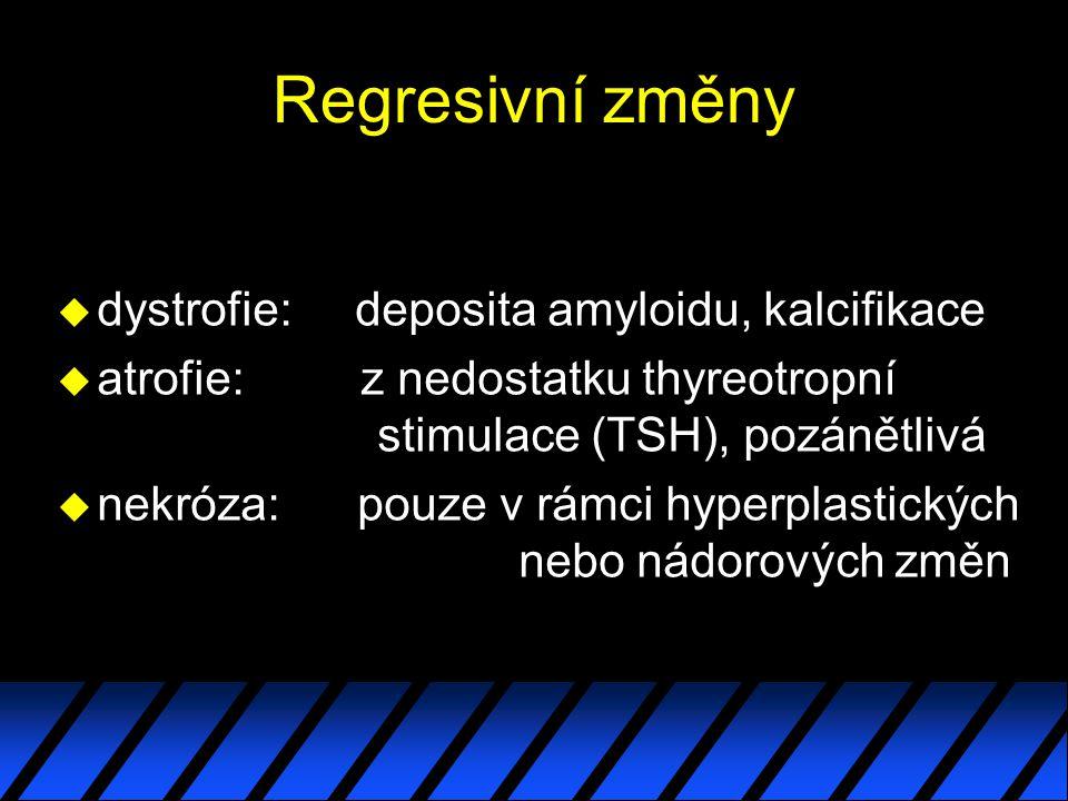 Regresivní změny dystrofie: deposita amyloidu, kalcifikace