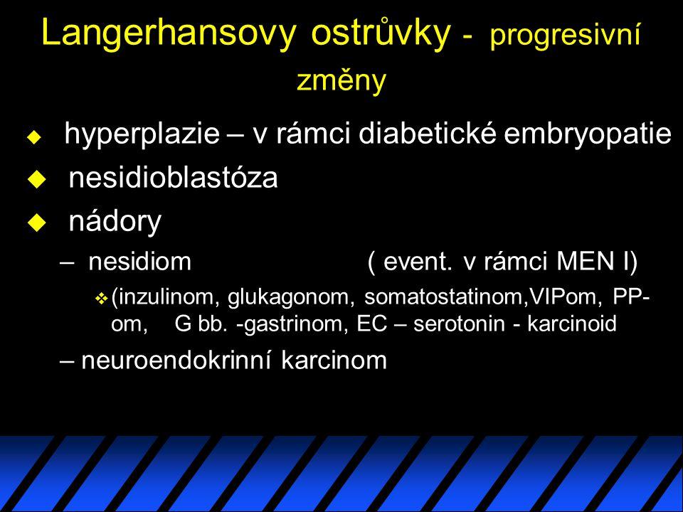 Langerhansovy ostrůvky - progresivní změny