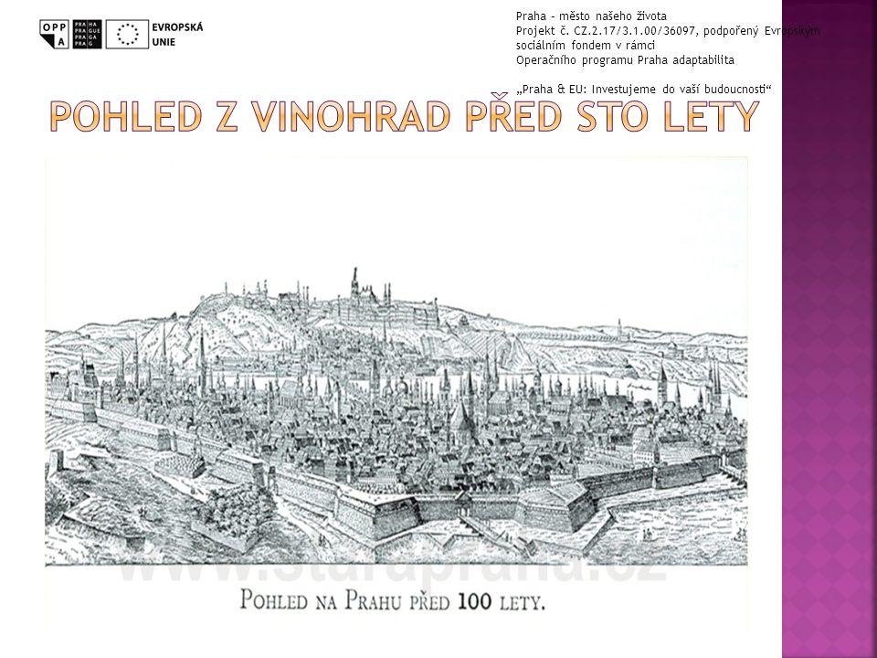Pohled z vinohrad před sto lety