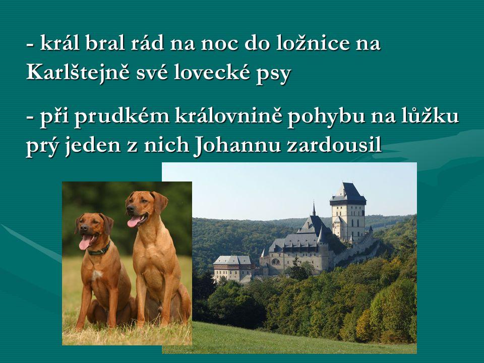 - král bral rád na noc do ložnice na Karlštejně své lovecké psy