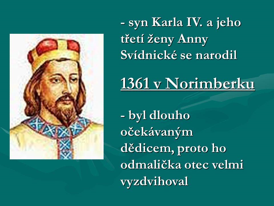 - syn Karla IV. a jeho třetí ženy Anny Svídnické se narodil
