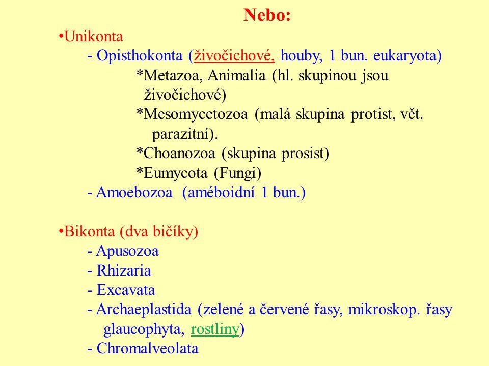 Nebo: Unikonta - Opisthokonta (živočichové, houby, 1 bun. eukaryota)