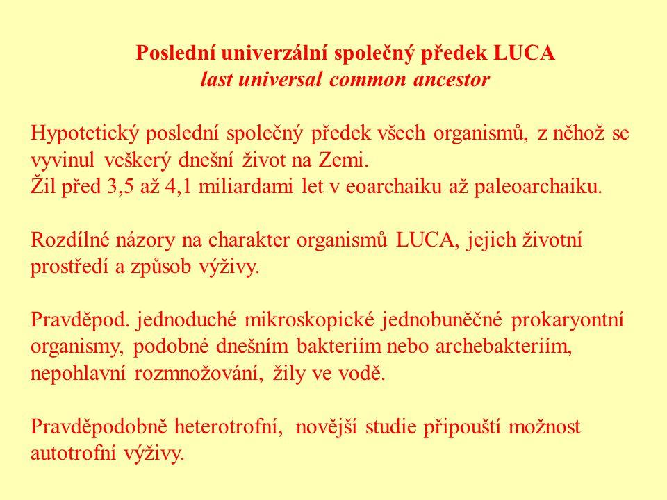 Poslední univerzální společný předek LUCA