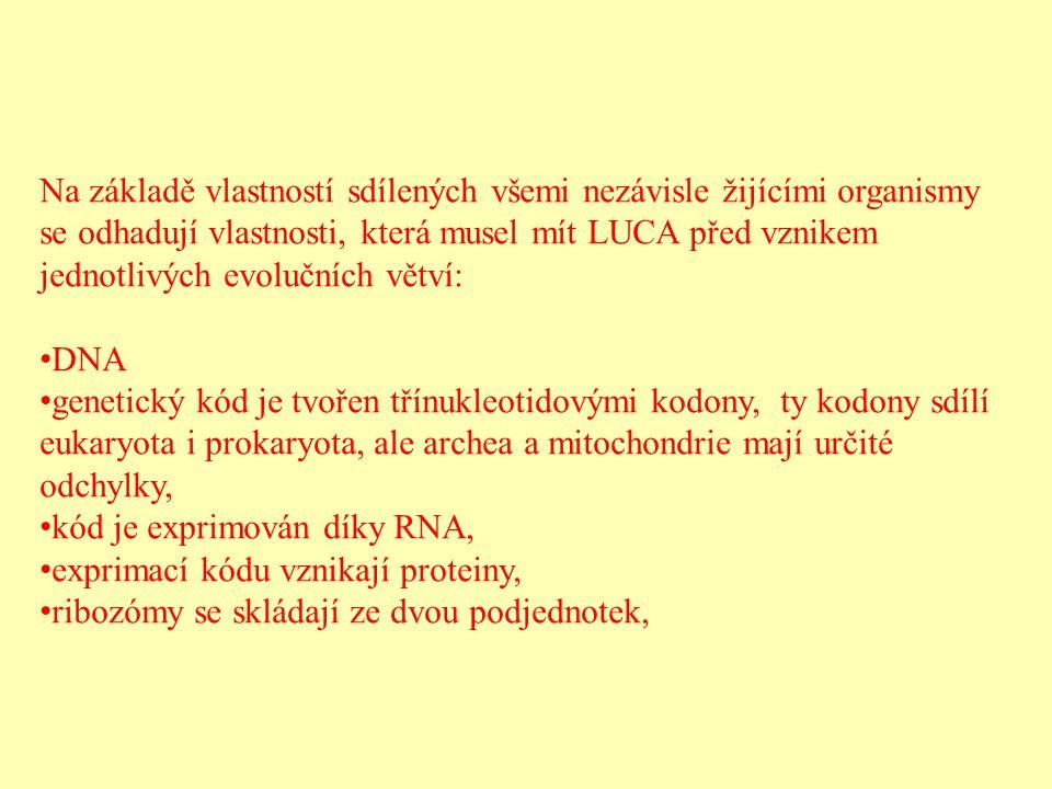 Na základě vlastností sdílených všemi nezávisle žijícími organismy se odhadují vlastnosti, která musel mít LUCA před vznikem jednotlivých evolučních větví: