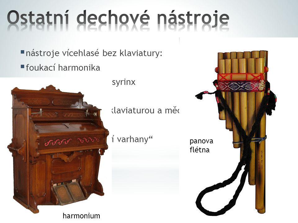 Ostatní dechové nástroje
