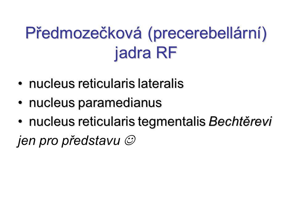 Předmozečková (precerebellární) jadra RF