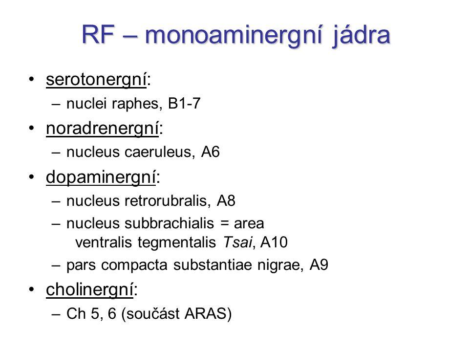 RF – monoaminergní jádra
