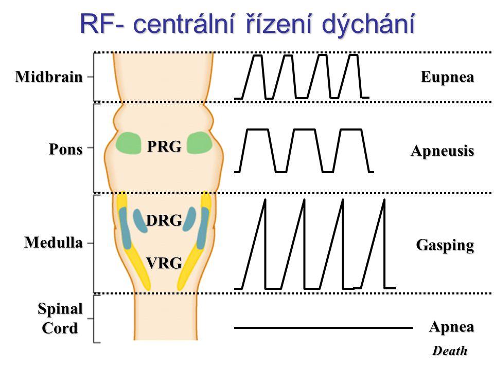 RF- centrální řízení dýchání
