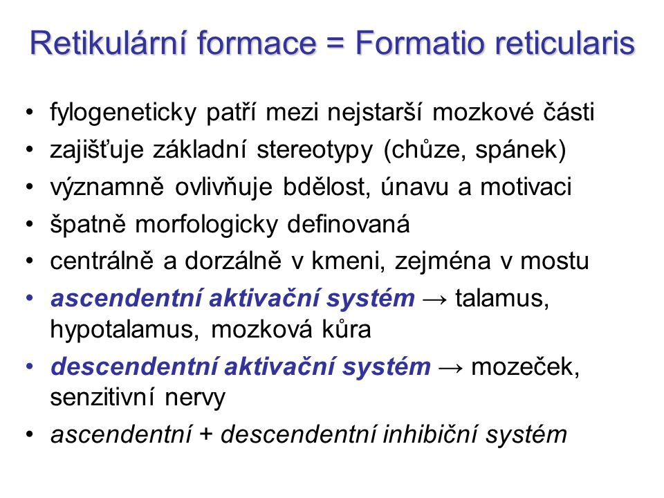 Retikulární formace = Formatio reticularis