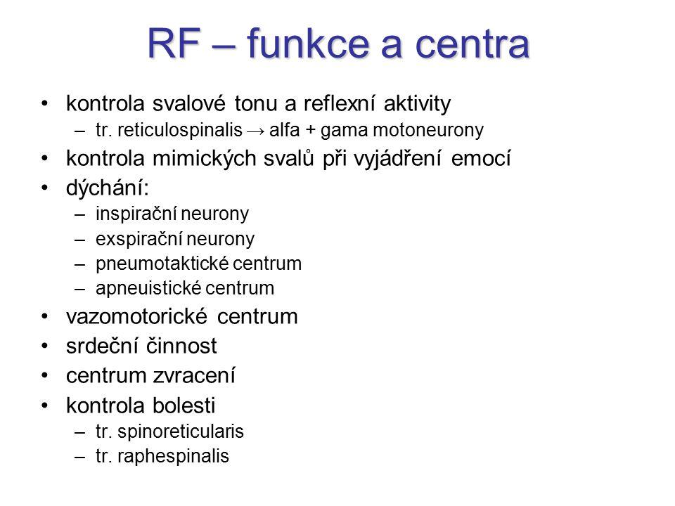 RF – funkce a centra kontrola svalové tonu a reflexní aktivity