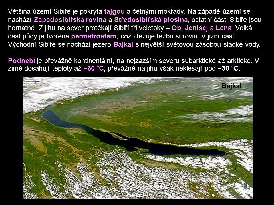 Většina území Sibiře je pokryta tajgou a četnými mokřady