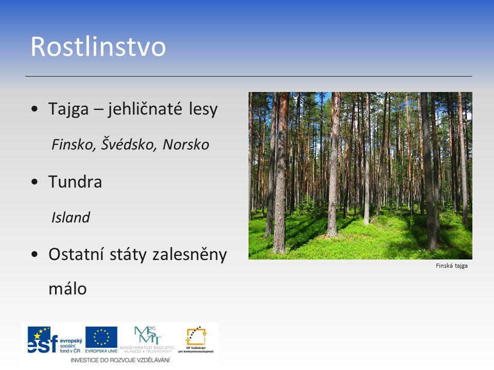 Rostlinstvo Tajga – jehličnaté lesy Tundra