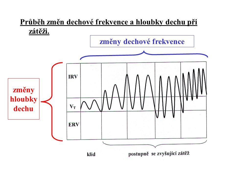 změny dechové frekvence