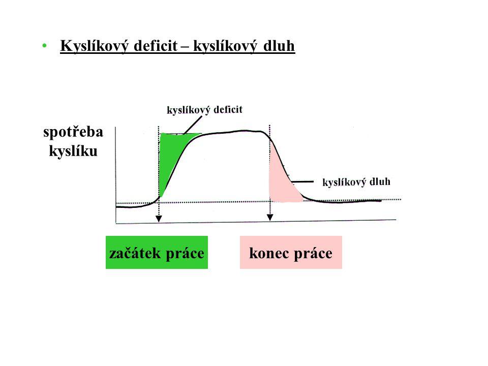 Kyslíkový deficit – kyslíkový dluh