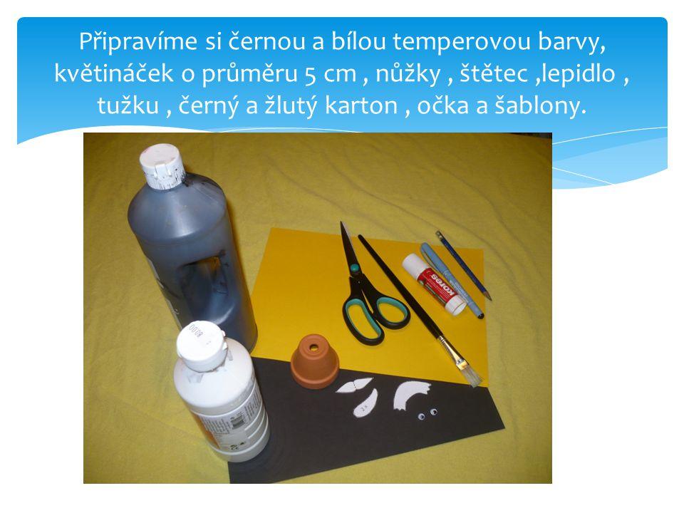 Připravíme si černou a bílou temperovou barvy, květináček o průměru 5 cm , nůžky , štětec ,lepidlo , tužku , černý a žlutý karton , očka a šablony.