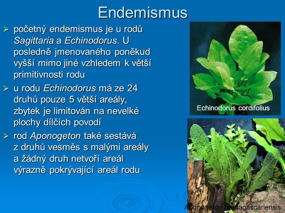 Endemismus početný endemismus je u rodů Sagittaria a Echinodorus. U posledně jmenovaného poněkud vyšší mimo jiné vzhledem k větší primitivnosti rodu.
