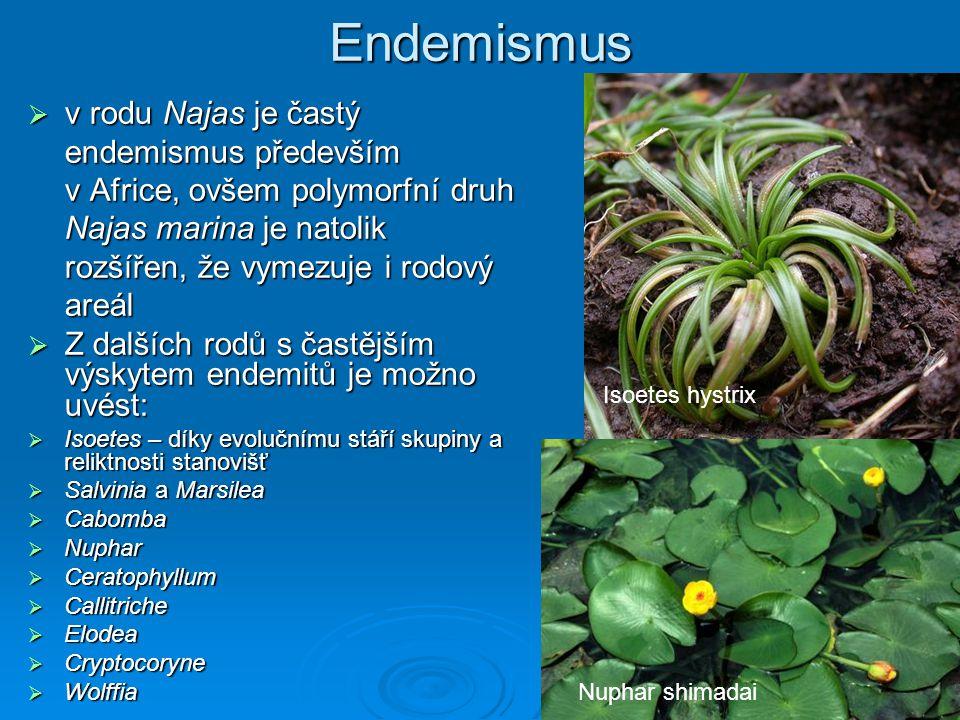 Endemismus v rodu Najas je častý endemismus především v Africe, ovšem polymorfní druh Najas marina je natolik rozšířen, že vymezuje i rodový areál.