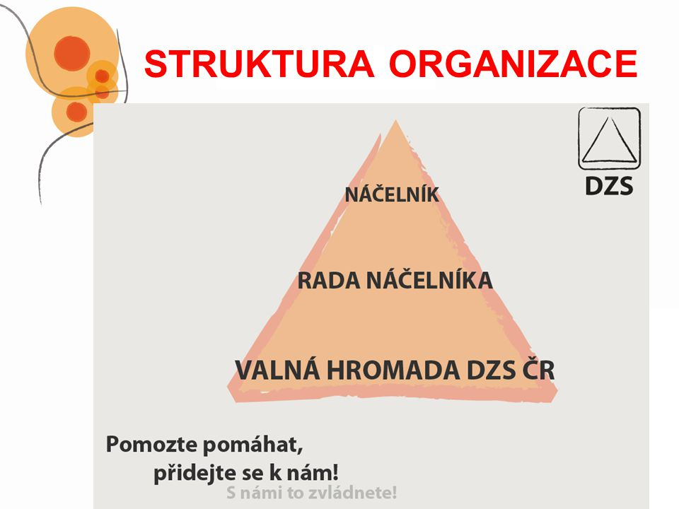 STRUKTURA ORGANIZACE