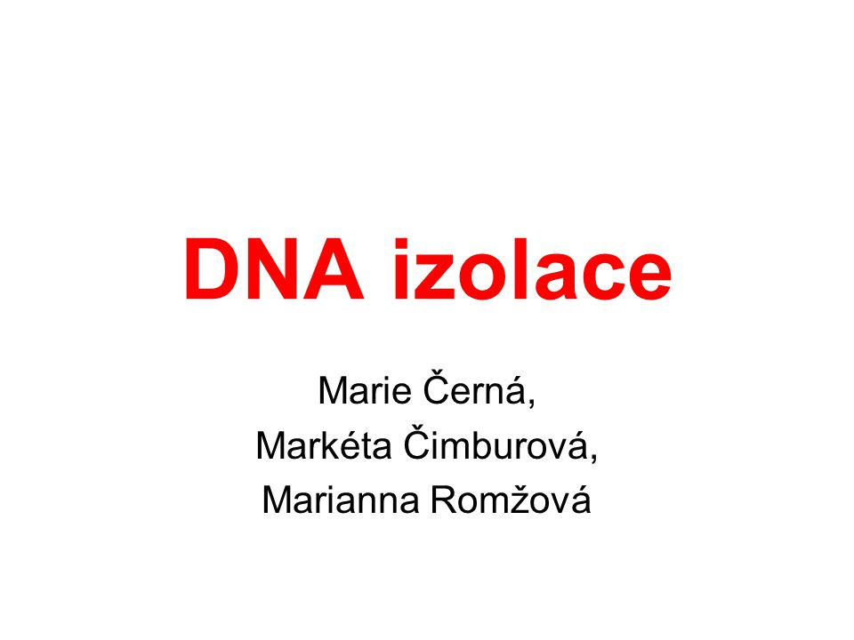 Marie Černá, Markéta Čimburová, Marianna Romžová