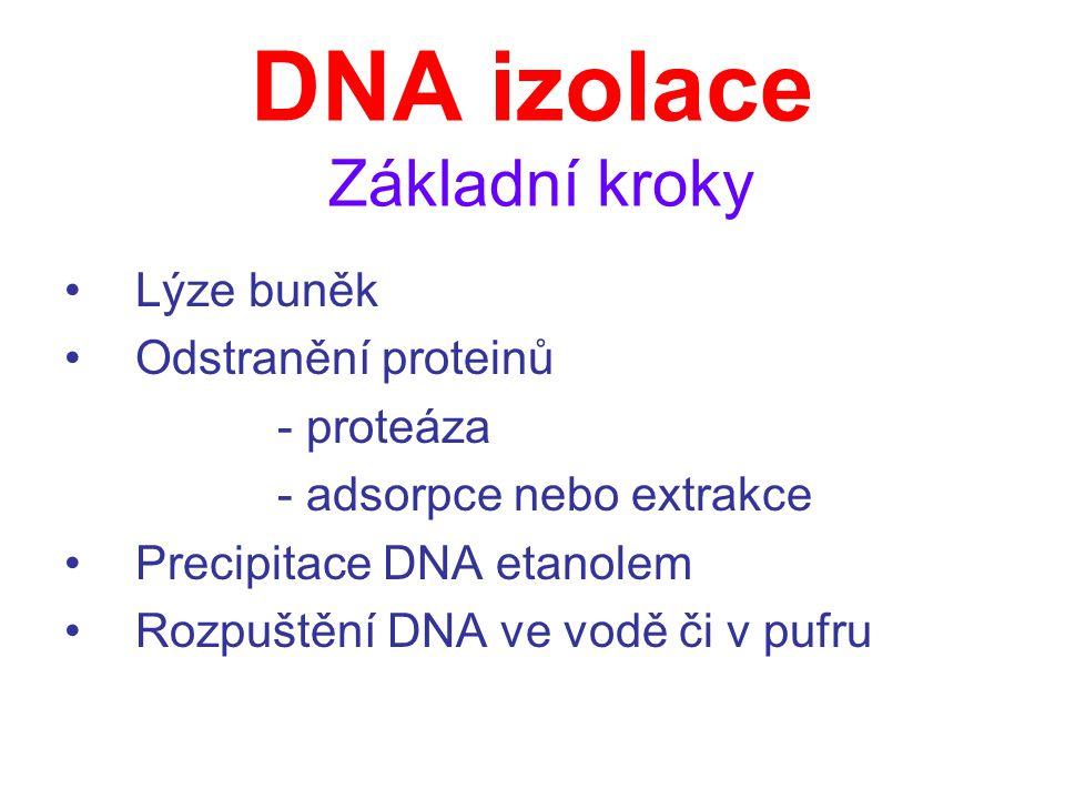 DNA izolace Základní kroky