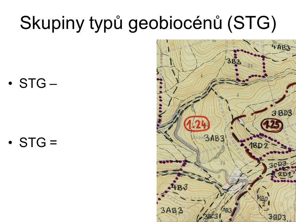 Skupiny typů geobiocénů (STG)