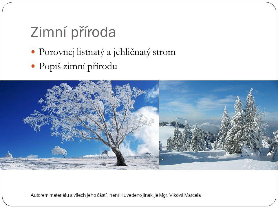 Zimní příroda Porovnej listnatý a jehličnatý strom Popiš zimní přírodu