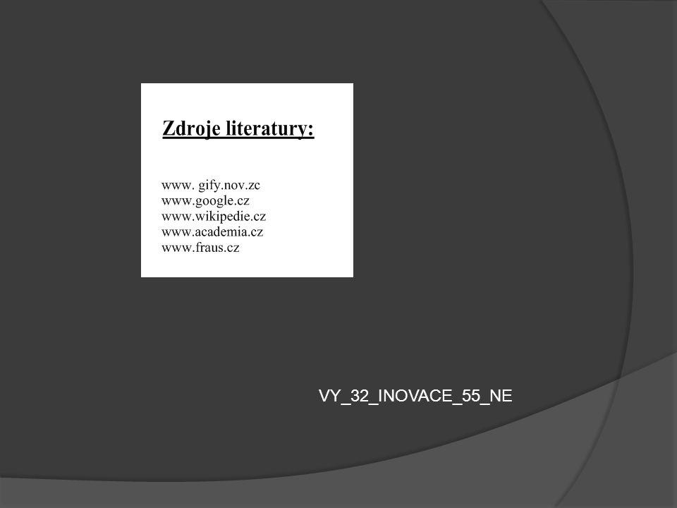 VY_32_INOVACE_55_NE
