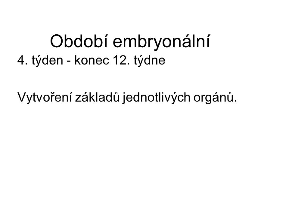 Období embryonální 4. týden - konec 12. týdne