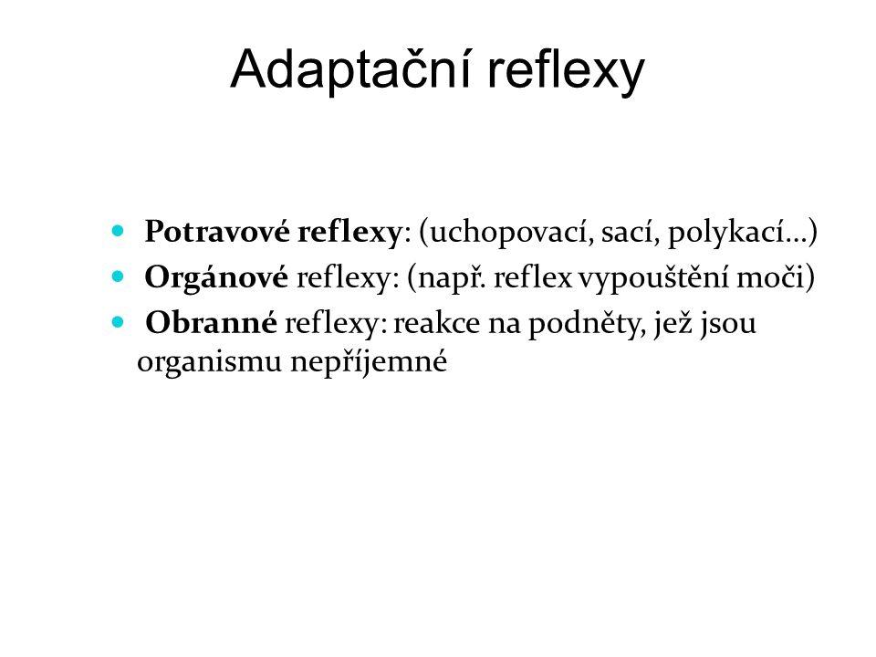 Adaptační reflexy Potravové reflexy: (uchopovací, sací, polykací…)