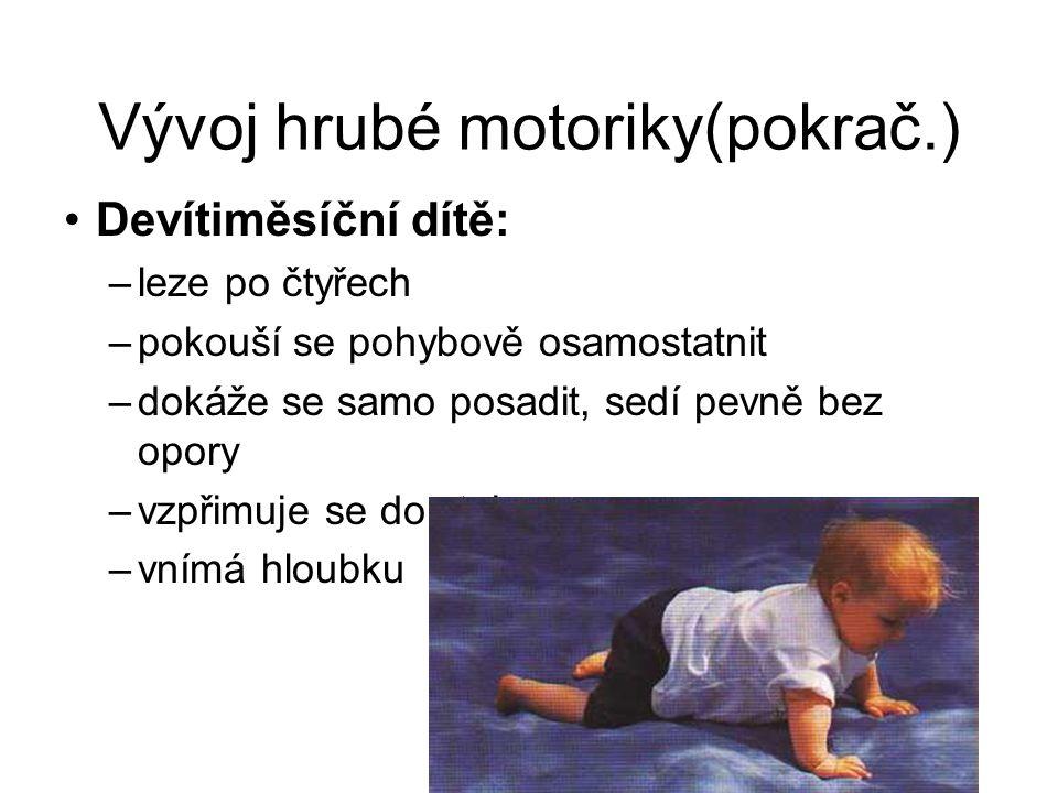 Vývoj hrubé motoriky(pokrač.)
