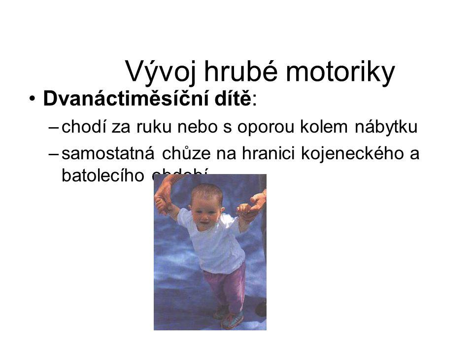 Vývoj hrubé motoriky Dvanáctiměsíční dítě: