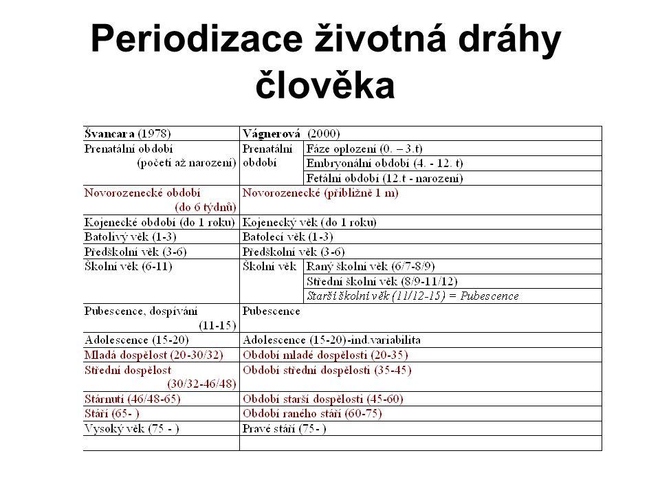 Periodizace životná dráhy člověka