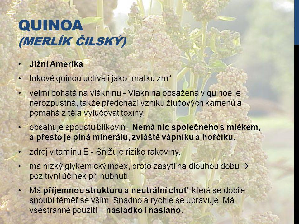 Quinoa (merlík čilský)