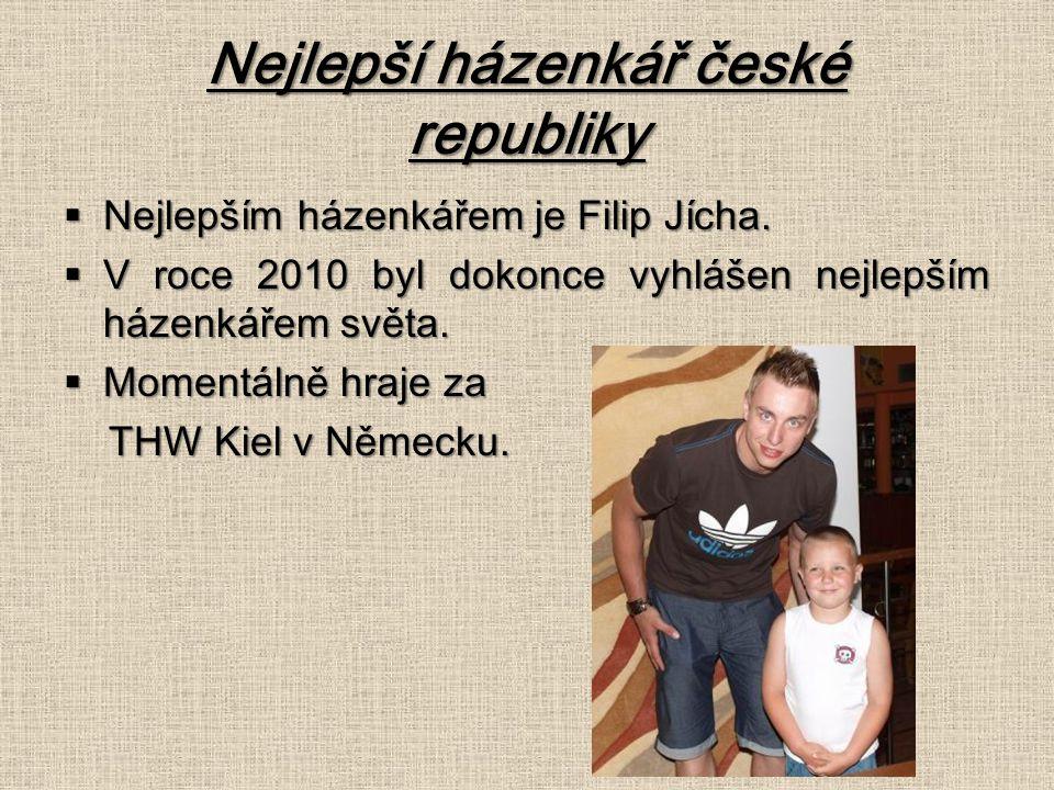 Nejlepší házenkář české republiky