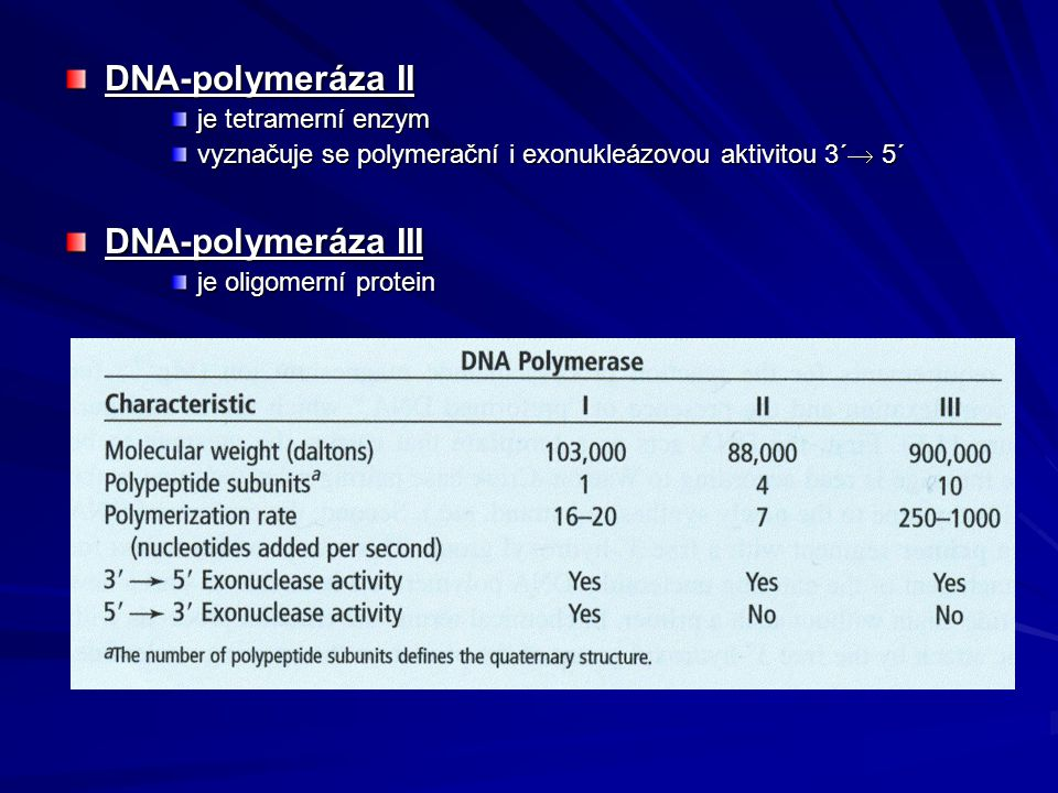 DNA-polymeráza II DNA-polymeráza III je tetramerní enzym