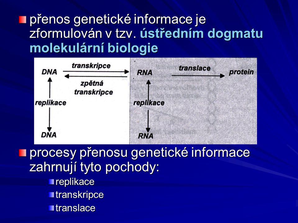 procesy přenosu genetické informace zahrnují tyto pochody: