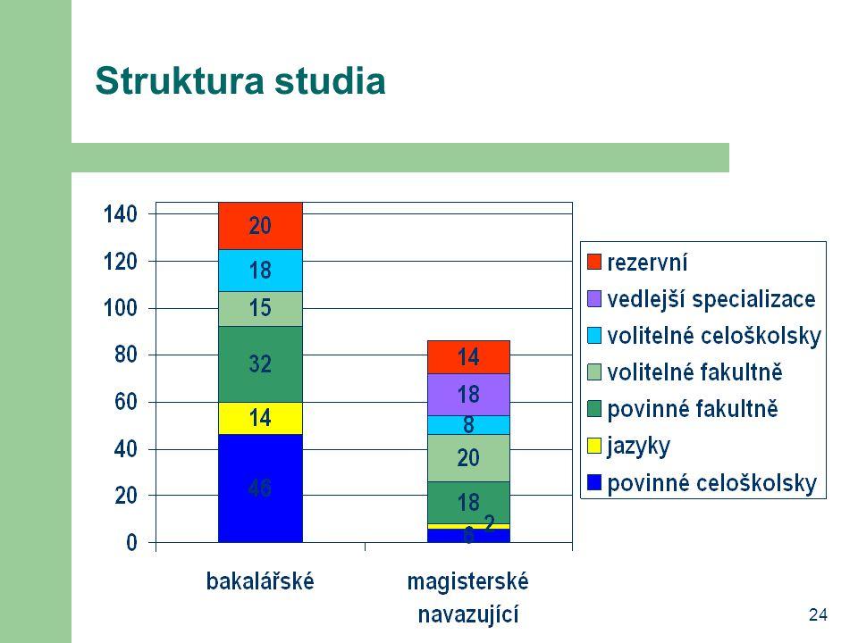 Struktura studia 24
