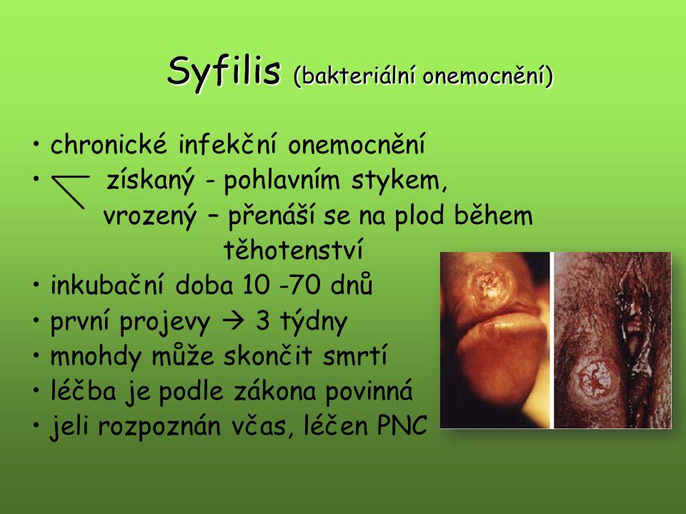 Syfilis (bakteriální onemocnění)