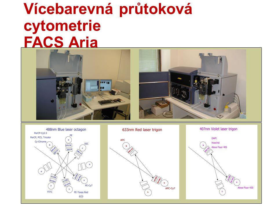 Vícebarevná průtoková cytometrie FACS Aria