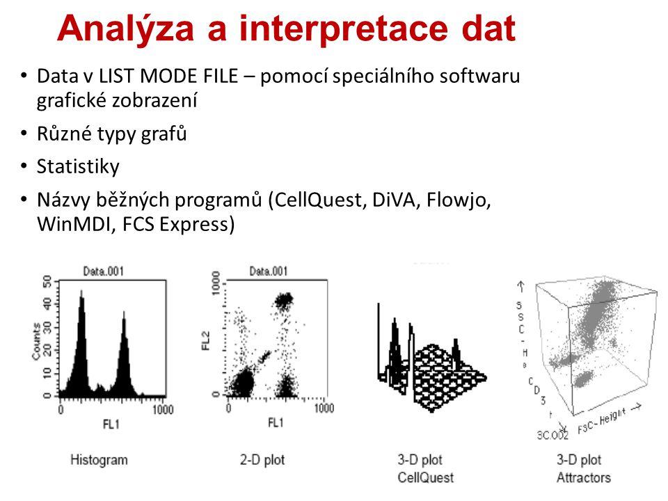 Analýza a interpretace dat