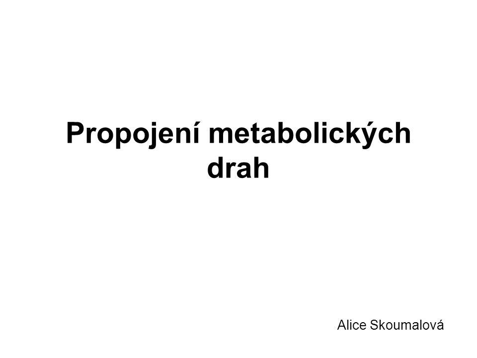 Propojení metabolických drah