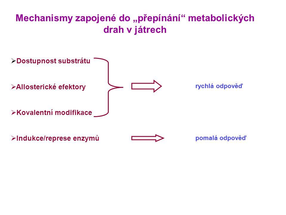 """Mechanismy zapojené do """"přepínání metabolických drah v játrech"""