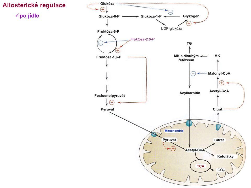 Allosterické regulace