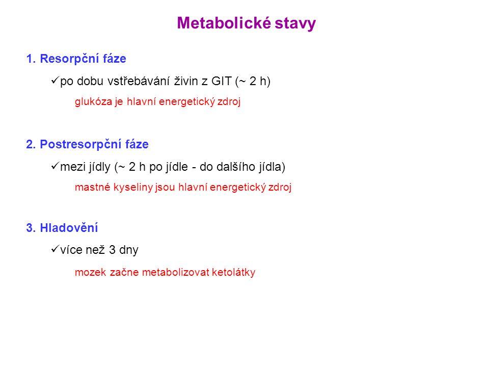 Metabolické stavy 1. Resorpční fáze