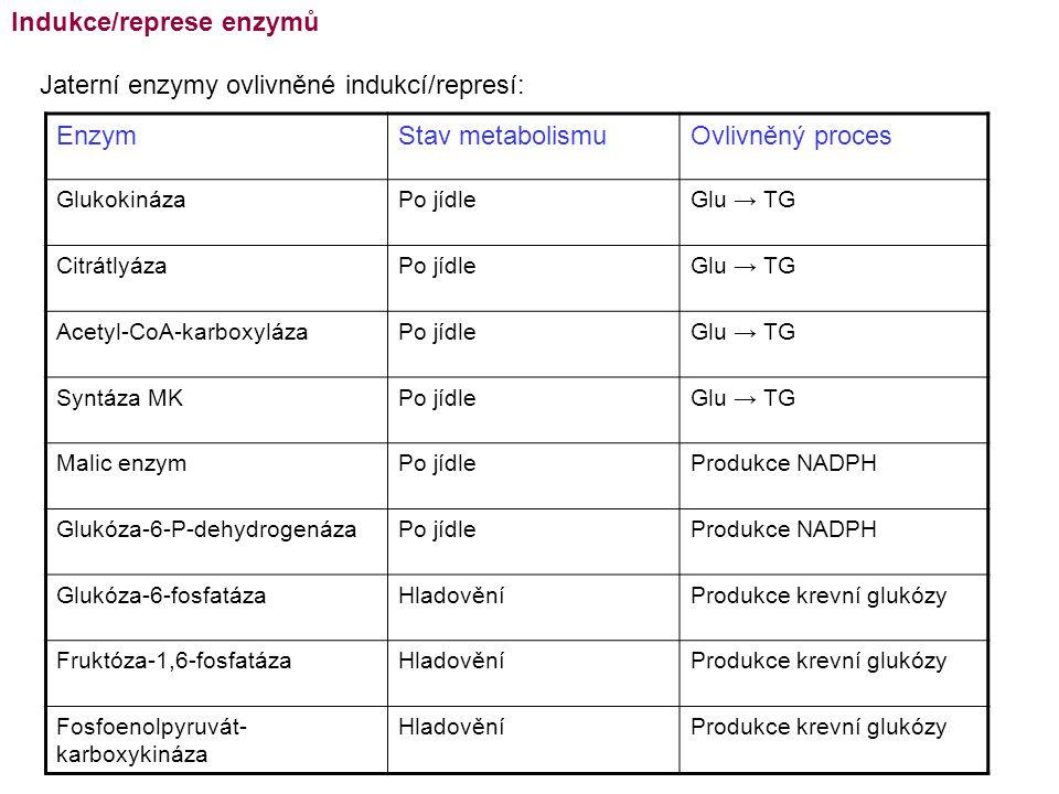 Indukce/represe enzymů