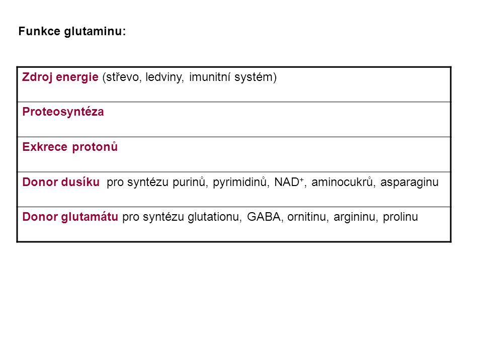 Funkce glutaminu: Zdroj energie (střevo, ledviny, imunitní systém) Proteosyntéza. Exkrece protonů.