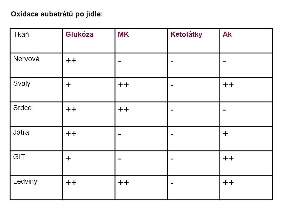 ++ - + Oxidace substrátů po jídle: Tkáň Glukóza MK Ketolátky Ak